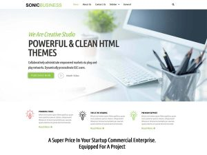 business wordpress theme