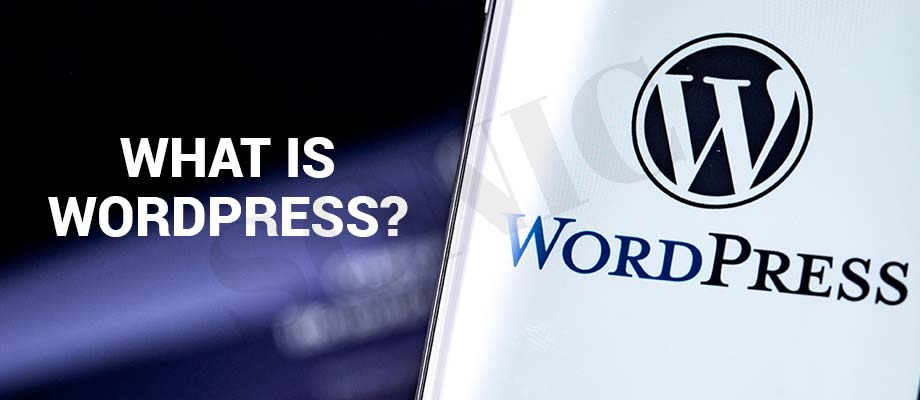 What is WordPress? Know Everything About WordPress